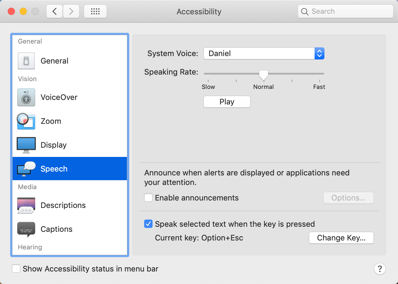 Accessibility panel in Mac System Preferences
