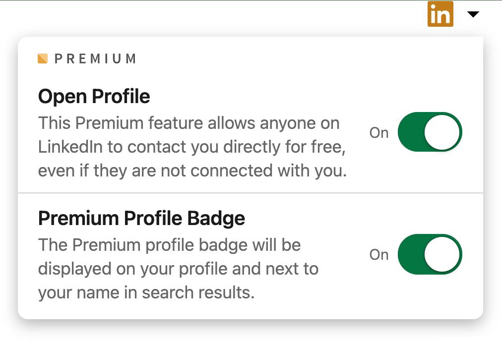 LinkedIn Premium profile editing options